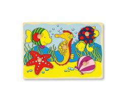 Poisson, hippocampe, tortue, étoile de mer, coquillage