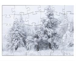Scènes d'hiver en Bulgarie